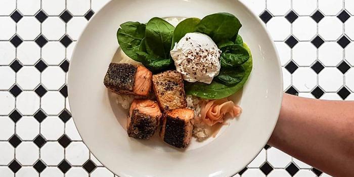 Pan Seared Salmon from Yummo Chow in Hotel NuVe Heritage in Bugis, Singapore