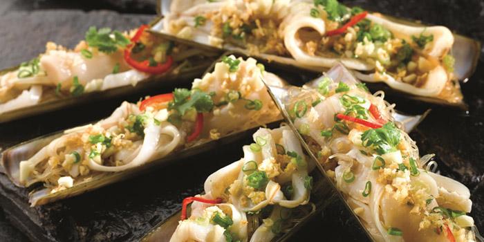 Bamboo Clams from JUMBO Seafood (East Coast Seafood Centre) in East Coast, Singapore