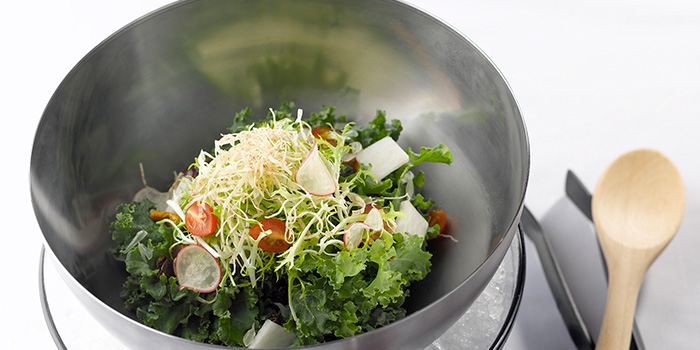Mixed Fresh Fruits and Kale Salad with Vietnam Rice Skin from LingZhi Vegetarian (Liat Towers) in Orchard Road, Singapore