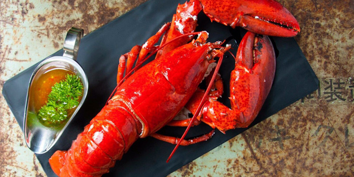 Lobster from The Raw Bar in Thonglor, Bangkok