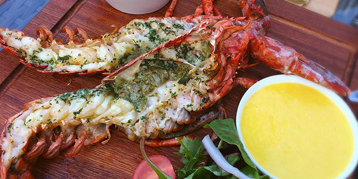 Whole Boston Lobster, Padstow Restaurant & Bar, Sai Kung, Hong Kong
