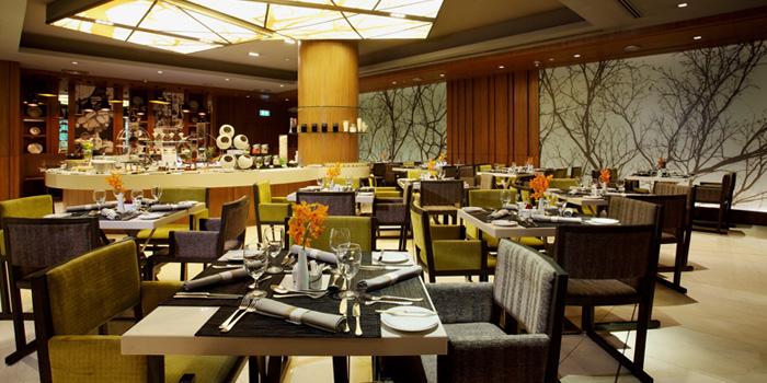 Dining Area from Chatuchak Cafe at Centara Grand at Central Plaza Ladprao Bangkok, Bangkok