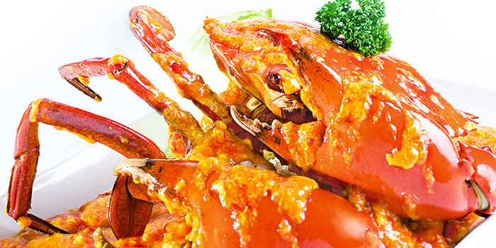 Chilli Crab from Gim Tim Restaurant in Ang Mo Kio, Singapore
