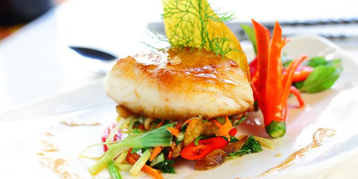 Grilled Snow Fish from Le Danang Restaurant at Centara Grand at Central Plaza Ladprao Bangkok, Bangkok