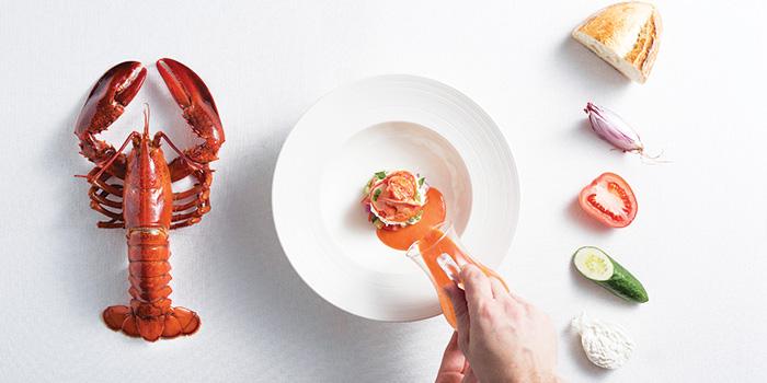 Boston Lobster, Panzanella Salad, Burrata Cheese from LaBrezza at The St. Regis Singapore in Tanglin, Singapore