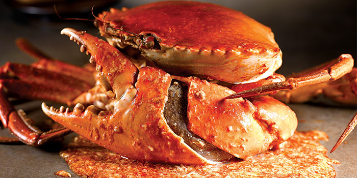 Chilli Crab from No Signboard Seafood (Clarke Quay Central) in Clarke Quay, Singapore