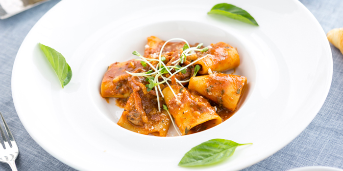 Paccheri Pasta from Don Giovanni Restaurant at Centara Grand at Central Plaza Ladprao Bangkok, Bangkok