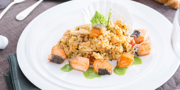 Seafood Risotto from Don Giovanni Restaurant at Centara Grand at Central Plaza Ladprao Bangkok, Bangkok
