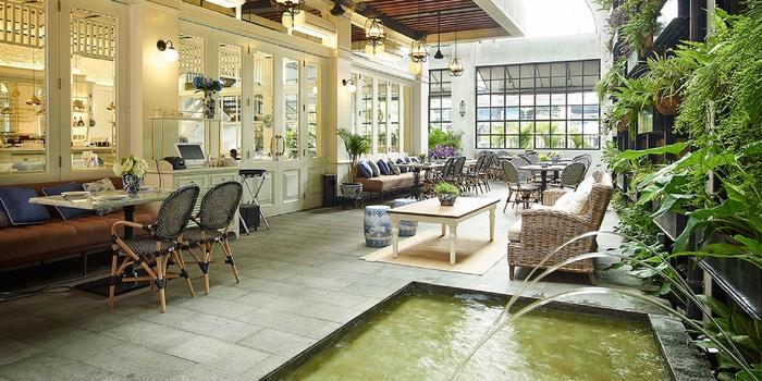 Interior at Blue Jasmine