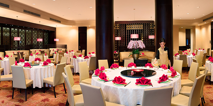 Interior of Xin Cuisine Chinese Restaurant in Outram, Singapore