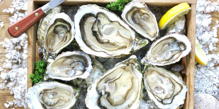 Irish-Premium-Oysters from Sea Truffles Seafood Bar at The Opus Building, Bangkok