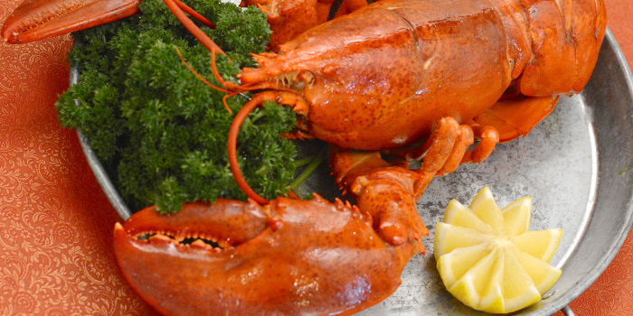 Maine-Lobster from Sea Truffles Seafood Bar at The Opus Building, Bangkok