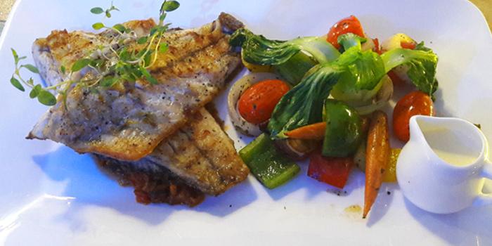 Pan Seared Sea bass from KUTAI Mussels Restaurant & Bar at Soi Suanplu,Thungmahamek, Sathorn, Bangkok