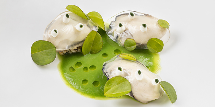 Poached Gillardeau Oyster, The Tasting Room, Coloane-Taipa, Macau