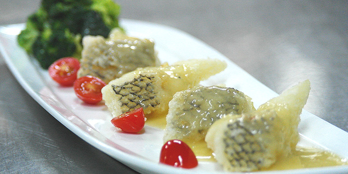Pan Fried Cod Fish Fillet from Tonny Restaurant at Geylang in Kallang, Singapore