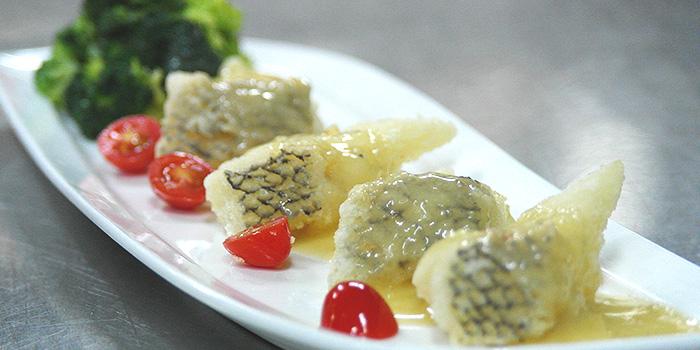 Pan Fried Cod Fish Fillet from Tonny Restaurant at Geylang in Kallang, Singapore