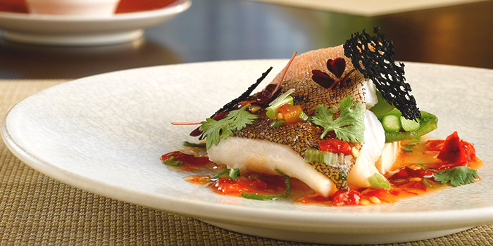 Steamed Red Garoupa Served with Pickled Chilies from Cherry Garden in Mandarin Oriental in City Hall, Singapore
