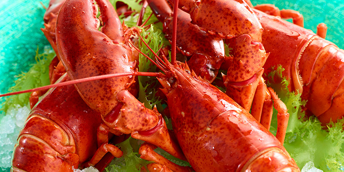 Boston Lobster, Cafe TOO, Admiralty, Hong Kong