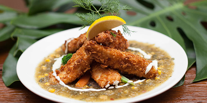 Cornflakes Crusted Fish Fillets with Green Tomatillo Sauce and Fried Corn from Comida Mexicana in East Coast, Singapore