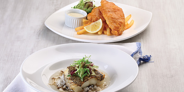 Battered Haddock Fish & Chips & Grilled Cod Fish with Wild Rice Broth from Earle Swensen