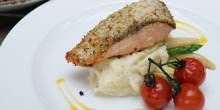 Lunch Promotion Salmon from Stärker Bistro (Hill View) in Bukit Timah, Singapore