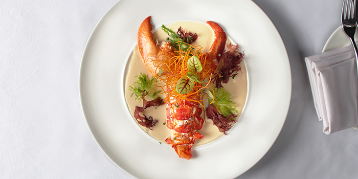 Steamed Boston Lobster, Le Petit Chef, Central, Hong Kong