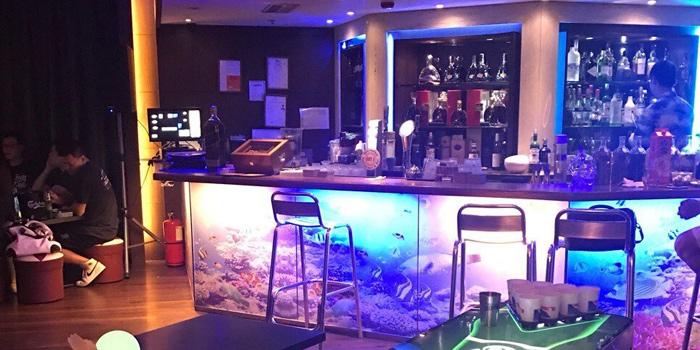 Interior, BABY K Bora Seafood, Tsim Sha Tsui, Hong Kong
