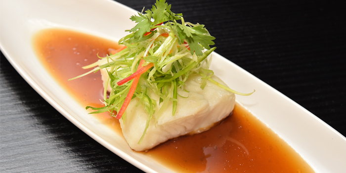 Snow-Fish-Fillet from  Red Rose Restaurant & Jazz Bar at Shanghai Mansion in Yaowaraj Road, Samphantawong, Bangkok