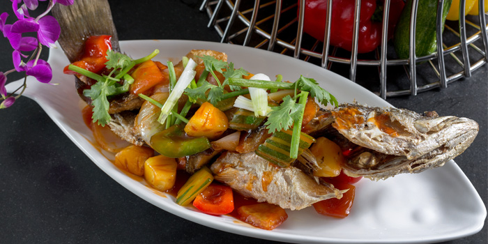 Sweet and Sour Seabass from BYD Bar & Bistro in Patong, Phuket, Thailand