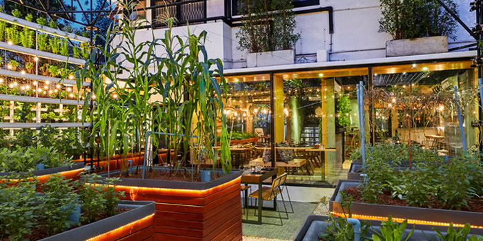 The Garden of Haoma at Sukhumvit Soi 31 Wattana, Bangkok