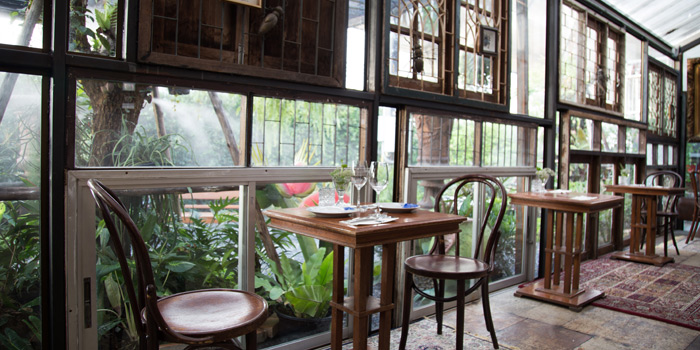Ambience from Insects in the backyard at 460/8 Sirindhorn Rd Bang Phlat, Bang Phlat Bangkok
