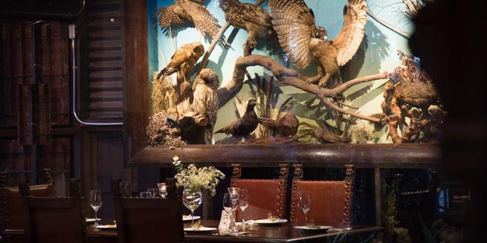 Dining Table from Insects in the backyard at 460/8 Sirindhorn Rd Bang Phlat, Bang Phlat Bangkok