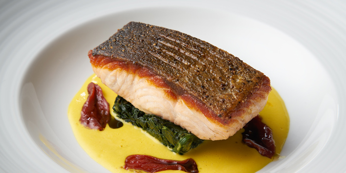 King Salmon from Whale