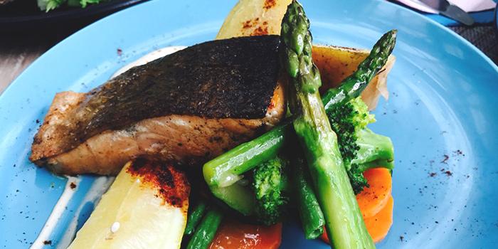 Salmon Fillet from Miska Cafe (Sentosa) in Sentosa, Singapore