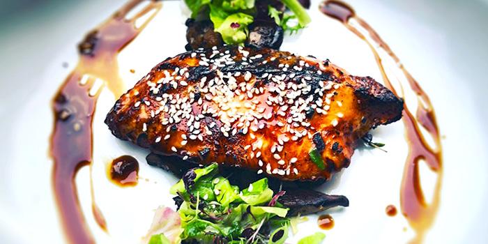 Norway Salmon Teriyaki from Yummo Chow in Hotel NuVe Heritage in Bugis, Singapore