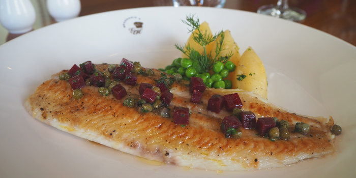 Pan Seared Sole from Brasserie 9 at Asiatique The Riverfront, Bangkok