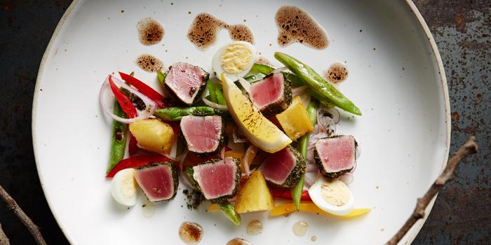 Tuna Salad from Insects in the backyard at 460/8 Sirindhorn Rd Bang Phlat, Bang Phlat Bangkok