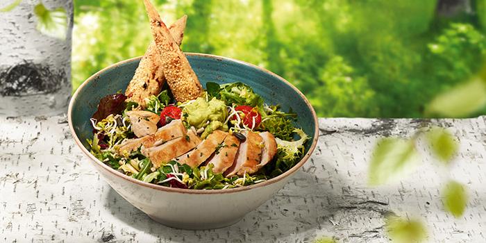Salad BRAVUR from Hans Im Gluck German Burgergrill (VivoCity) at VivoCity in HarbourFront, Singapore