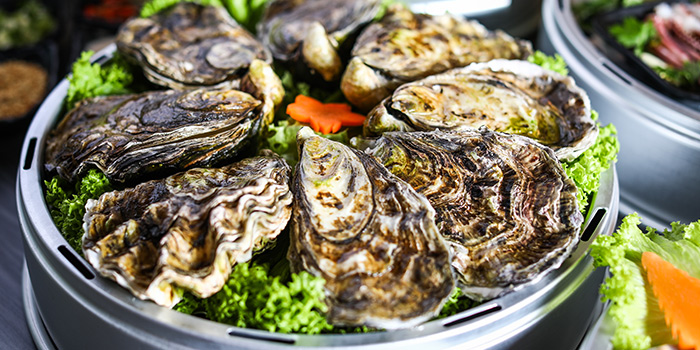 Oysters from Captain K Seafood Tower (Middle Road) at Midland House in Bugis, Singapore