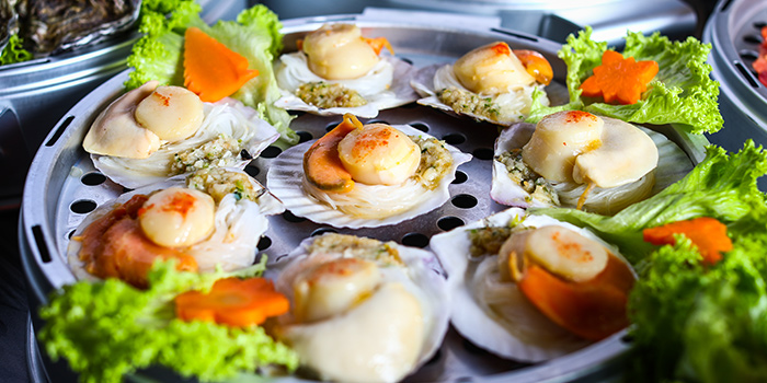 Scallops from Captain K Seafood Tower (Middle Road) at Midland House in Bugis, Singapore