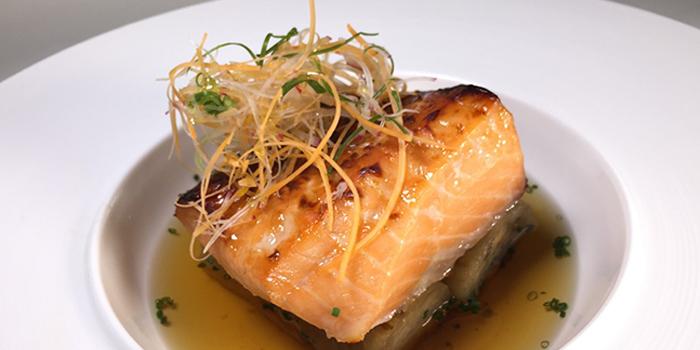 Salmon, Sky726, Mong Kok, Hong Kong
