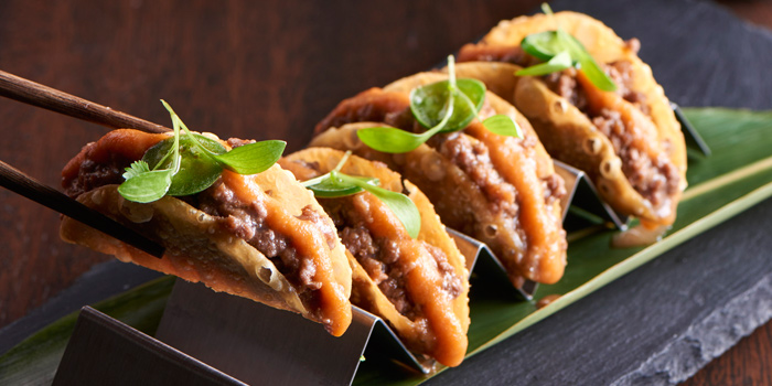 Taco from Akira Back at Marriott Marquis Sukhumvit 22, Klongton Klongtoey, Bangkok Thailand