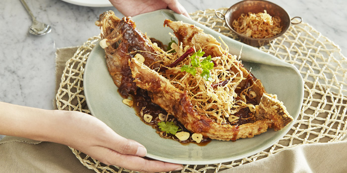 Butterfly-crispy-grouper from The Boathouse in Kata Beach, Muang Phuket, Thailand