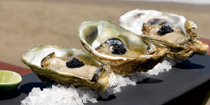 Oyster at Starfish Bloo, Seminyak