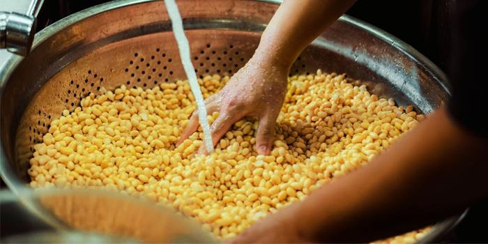 Specially Imported Soy Bean from SBCD Korean Tofu House (Tanjong Pagar House) at Tanjong Pagar House in Tanjong Pagar, Singapore
