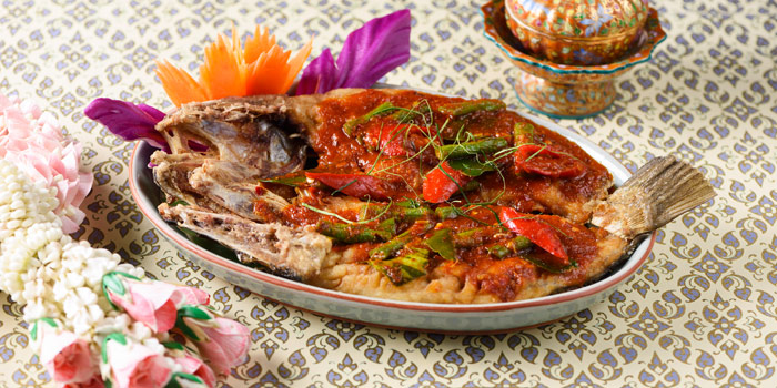 Deep Fried Sea Bass with Curry from Baan Kanitha & Gallery at South Sathorn Road Thung Maha Mek, Sathorn Bangkok