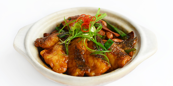 Braised Garoupa from Full of Luck Restaurant in Holland Village, Singapore