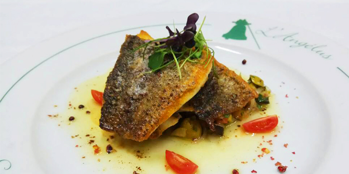 Seabass from L