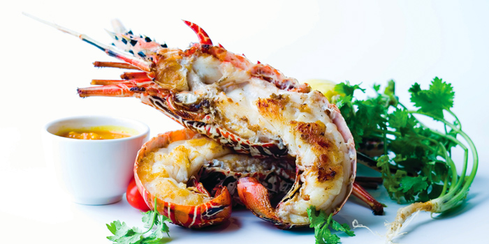 Lobster from Quayside Seafood Restaurant in Clarke Quay, Singapore