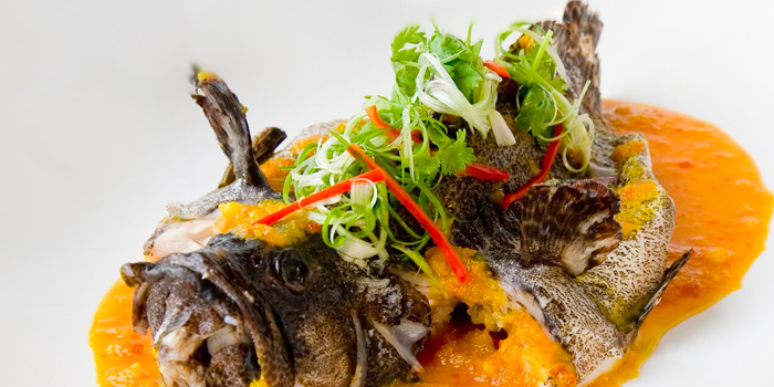 Steamed Nyonya Style Fish from Quayside Seafood Restaurant in Clarke Quay, Singapore